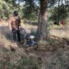 Ο ζεόλιθος στην ελιά - Ζεόλιθος | Zeolife.gr