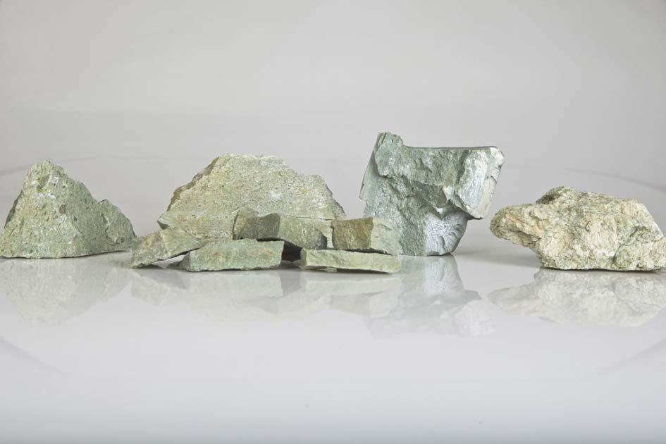 New steps ahead for the Greek zeolite - N. Lygeros