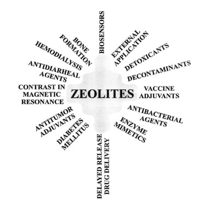 properties of zeolites as cataystics Database of free chemistry essays - we have thousands of free essays across a wide range of subject areas  properties of zeolites as cataystics.
