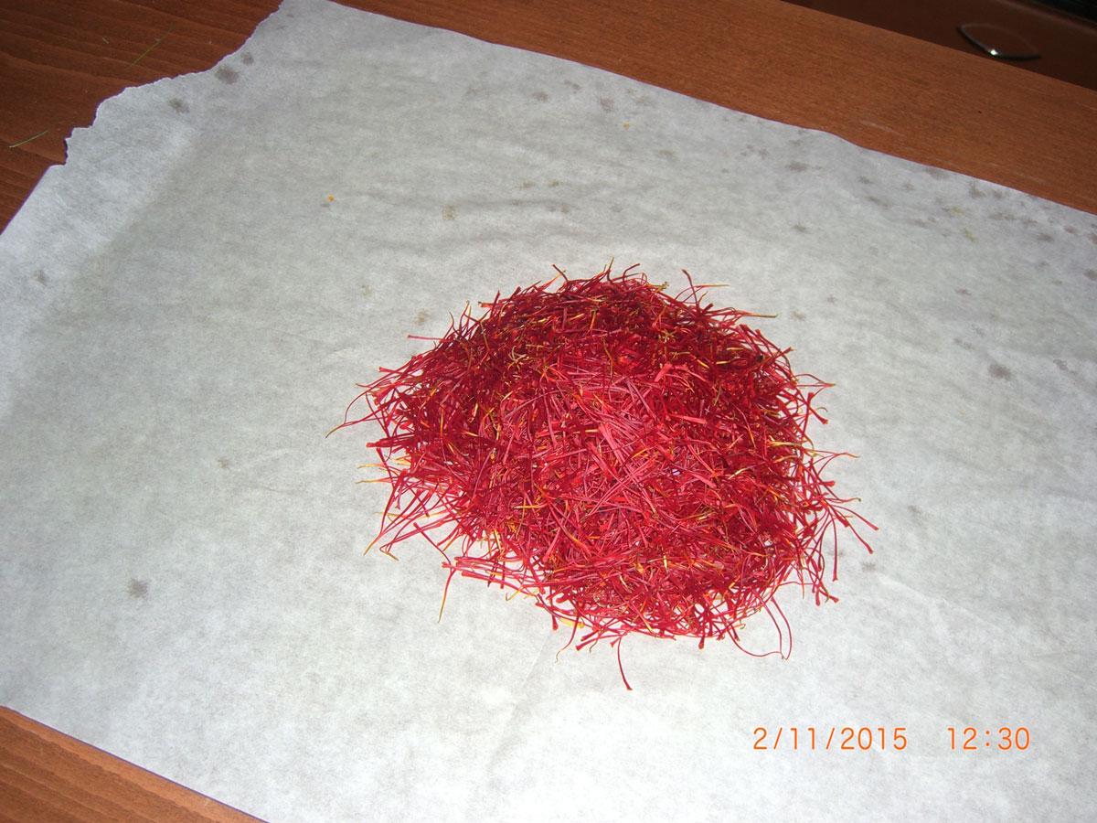 ζεολιθικός Κρόκος Κοζάνης