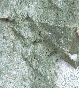Οι πολυφαινόλες του ζεόλαδου Ν. Λυγερός
