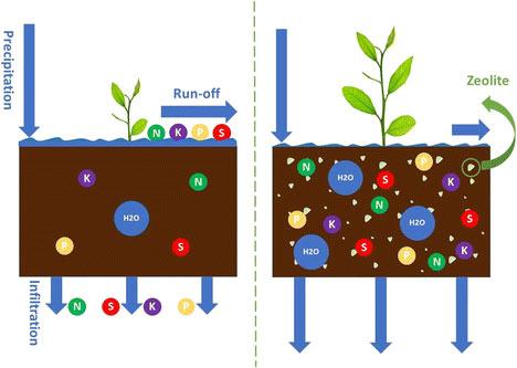Εφαρμογή των ζεολίθων στην αειφόρο γεωργία: επισκόπηση της διατήρησης του νερού και της θρεπτικής ουσίας