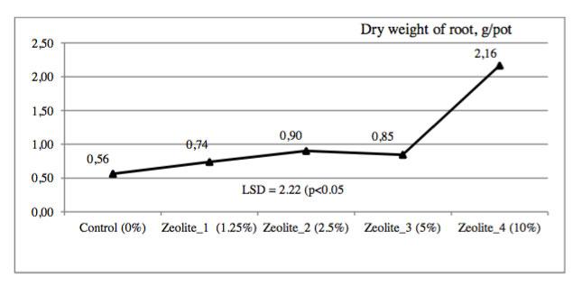 Ο ζεόλιθος βελτιώνει την ανάπτυξη των καλλιεργειών σε μολυσμένο χώμα από βιομηχανικά απόβλητα και βαρέα μέταλλα