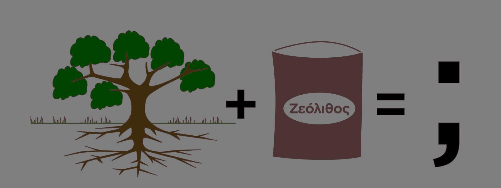 Ζεόλιθος σε υπάρχοντα δέντρα – ο σωστός τρόπος ενσωμάτωσης