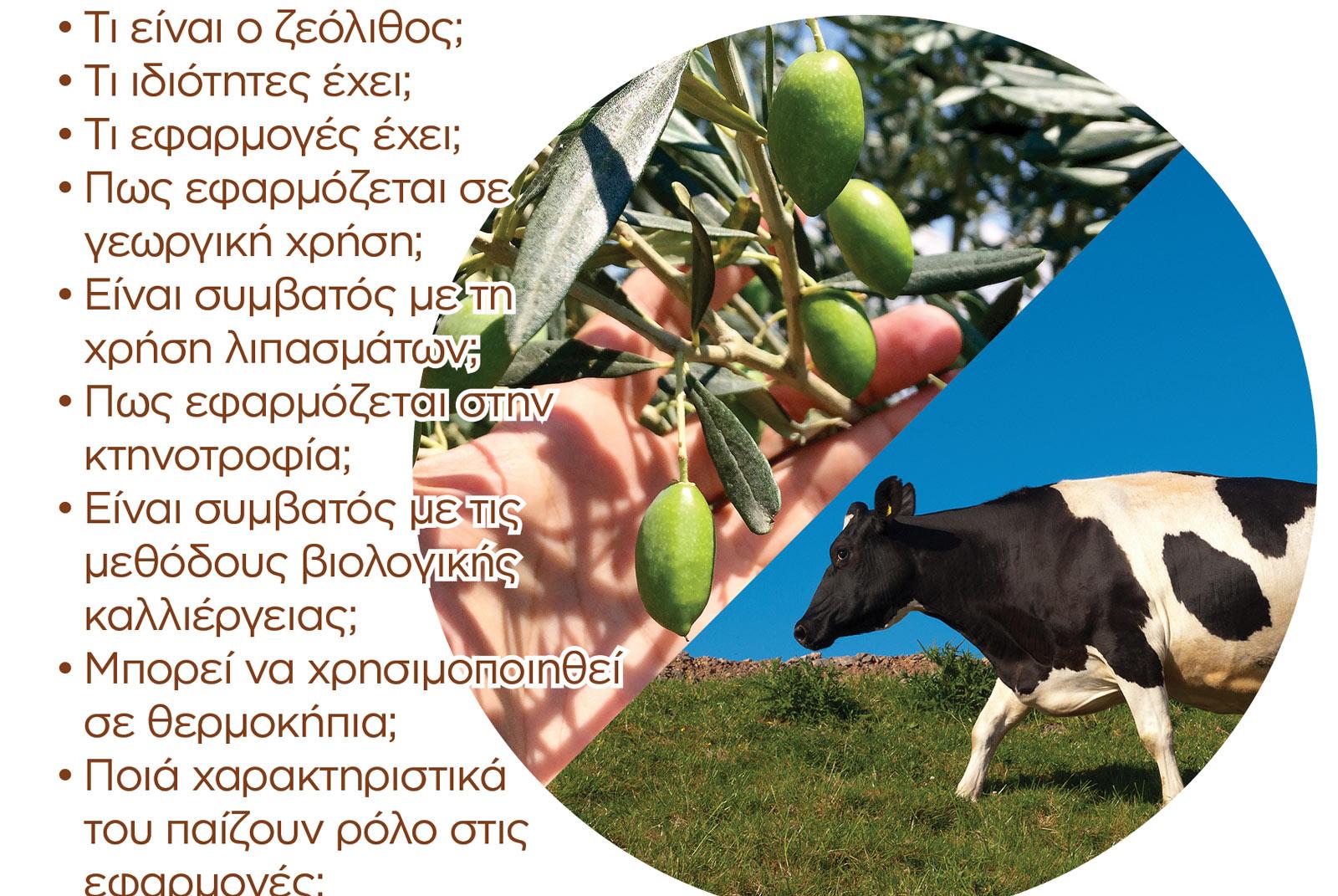 Ενημέρωση για τον ζεόλιθο, 7 Δεκέμβρη, Άβαντας Αλεξανδρούπολης