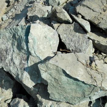 Νέα δεδομένα για τον Ελληνικό ζεόλιθο και νέα ελπιδοφόρα μηνύματα για τη νέα χρονιά