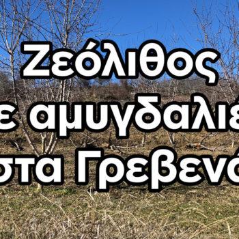 Ζεόλιθος σε αμυγδαλιές στο χωριό Αμυγδαλιές Γρεβενών [Video]